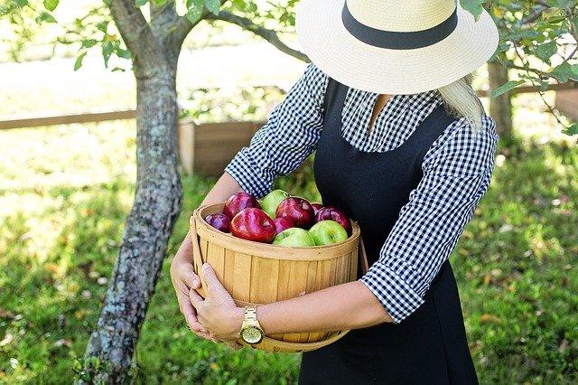 りんごと女性
