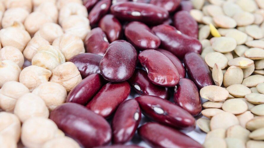 タンパク質が多くても癌を促進するIGF-1レベルは上昇しない【植物タンパク質なら減少】|栄養学サイトのNutritionFacts.orgを見よう