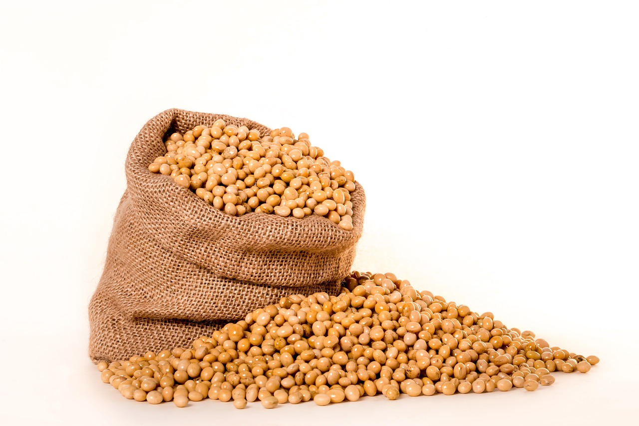 大豆はIGF-1血中濃度を特別上げ下げしない。大豆以外の植物タンパク質は下がる|栄養学サイトのNutritionFacts.orgを見よう